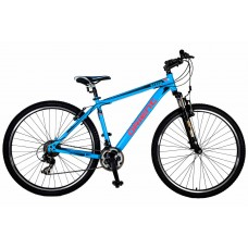 29'' STEED ORIENT